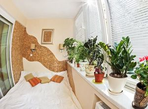8 loại cây nên đặt trong phòng ngủ