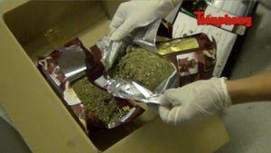 Cận cảnh hiện trường hai đường dây ma túy ở TPHCM