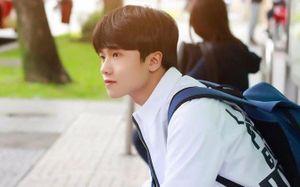 'Soái ca phim học đường' được ví là bản sao của diễn viên nổi tiếng