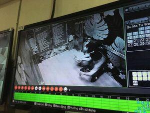 Đôi nam nữ bị thương khi mắc kẹt trong thang máy tòa nhà 26 tầng
