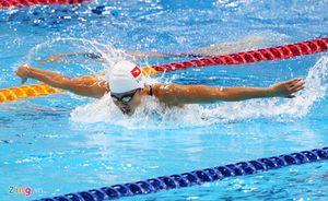 Sea Games 29 ngày 24-8: Chờ vàng từ Ánh Viên