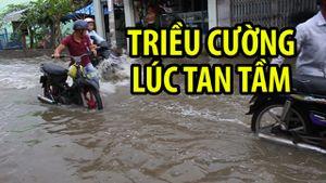 Người Sài Gòn khốn khổ vì xe chết máy giữa biển nước triều cường