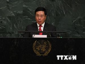 Việt Nam luôn là thành viên có trách nhiệm của cộng đồng quốc tế