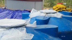 Bão số 10 làm lộ kho hóa chất lạ tại Quảng Bình