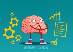 Não bộ điều khiển cơ thể như thế nào?