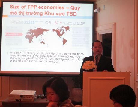 Loi ich va thach thuc tu Hiep dinh TPP: Goc nhin cua doanh nghiep trong nuoc - Anh 1