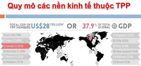 Loi ich va thach thuc tu Hiep dinh TPP: Goc nhin cua doanh nghiep trong nuoc - Anh 2