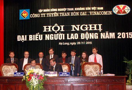 Tuyen than Hon Gai: Vuot 100% cac chi tieu - Anh 1