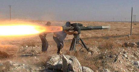 Nga cung cap vu khi cho Syria chong khung bo - Anh 1