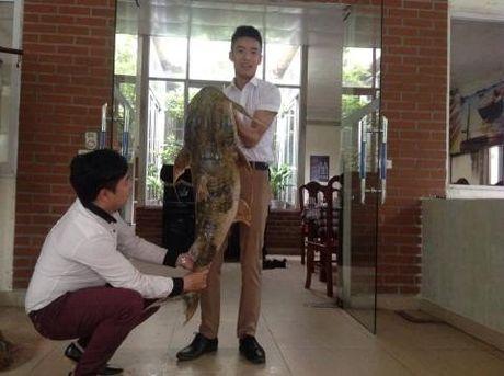Ca chien khong lo gia hang chuc trieu dong o thu do - Anh 1