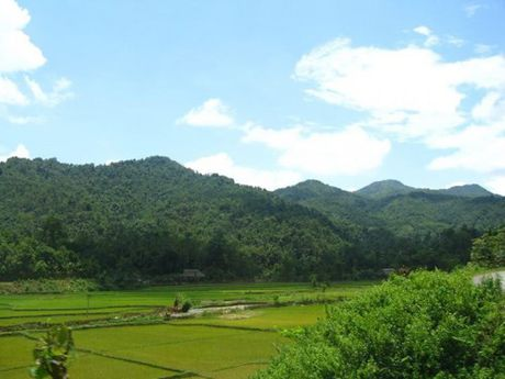 Cong dong kinh te ASEAN: Thach thuc cho nong lam nghiep - Anh 1