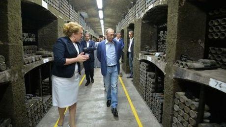 Ong Putin va Berlusconi uong ruou vang o Crimea, xuong ruou bi phat - Anh 1