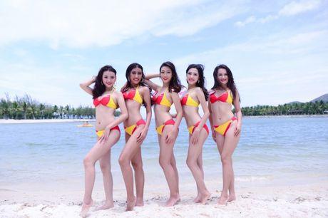 Bikini Vietjet nong bong tai xuat cung Hoa Hau Hoan Vu Viet Nam - Anh 3