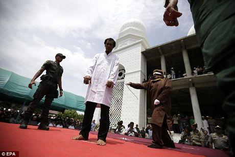 Buoi phat roi cong khai quan he truoc hon nhan o Indonesia - Anh 6
