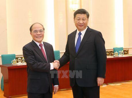 Chu tich Quoc hoi Nguyen Sinh Hung hoi kien Chu tich Trung Quoc - Anh 1