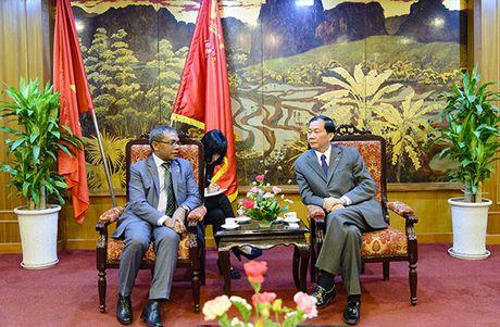 Nhieu co hoi dau tu hap dan tai Timor-Leste cho doanh nghiep Viet - Anh 1