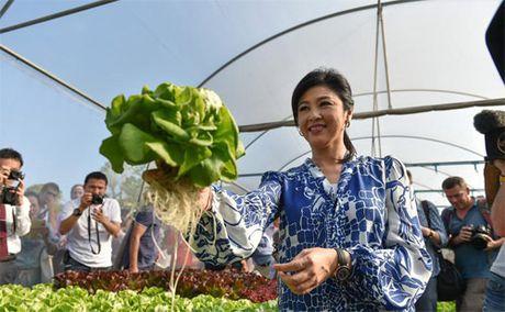 Cuu Thu tuong Thai xinh dep hop bao khoe rau tu trong - Anh 8