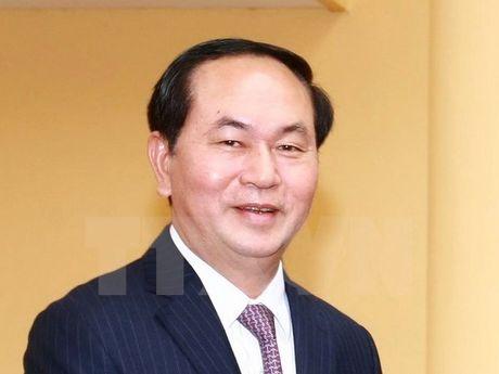 Chu tich nuoc Tran Dai Quang tra loi phong van TTXVN - Anh 1