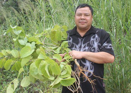 Bi an can ham o Tuyen Quang giup nam nu 'hoi sinh' tuoi thanh xuan - Anh 6