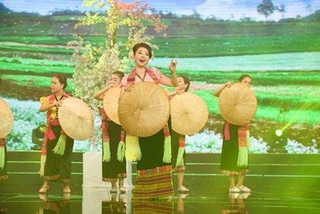 Bao Quoc se tai ngo khan gia Danh hai dat Viet sau bao benh - Anh 7