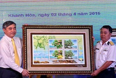 "Phat hanh bo tem ""Bang vuong"" – mot loai thuc vat quy hiem sinh truong o Truong Sa - Anh 3"
