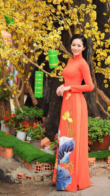 Ngam ve dep 'van nguoi me' cua A khoi Nhan sac 2016 Mai Thanh Ha - Anh 8