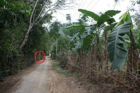 Quang Binh: Ke toan truong hoc chet bat thuong voi nhieu vet dam - Anh 1