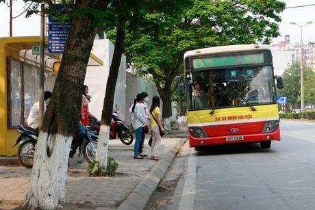 Ha Noi se co 8 tuyen xe bus nhanh - Anh 1