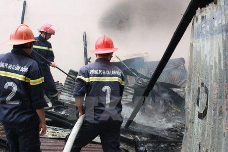 Lam Dong: Hoa hoan luc rang sang lam mot nguoi tu vong - Anh 1