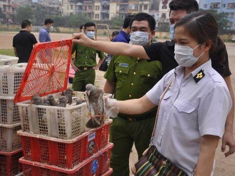 Ha Noi: Hang loat bot chien gion 'ban' trong cong ty gia vi - Anh 2