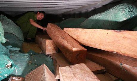 Dung san kho nguy trang cho go quy de qua cua khau - Anh 1