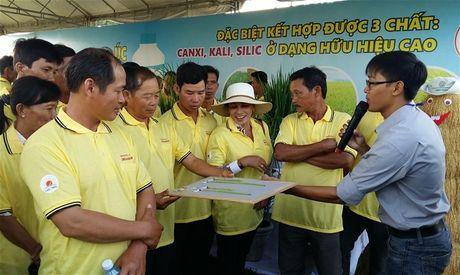 San xuat nong nghiep huu co sinh hoc chua den 0,1% - Anh 1