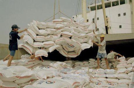 Gioi thieu Cam nang huong dan doanh nghiep ve TPP dau tien tai Viet Nam - Anh 1