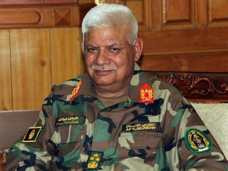 Afghanistan bo nhiem Bo truong Quoc phong, Giam doc An ninh - Anh 1