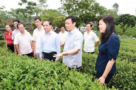 Tuyen Quang phai phan dau di dau khu vuc ve cai thien moi truong dau tu kinh doanh - Anh 2