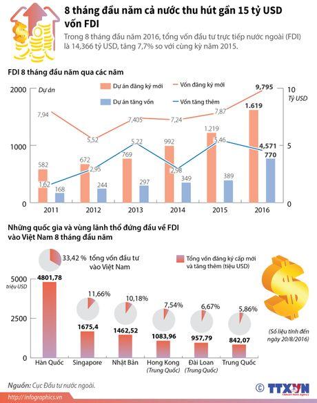 Ca nuoc thu hut gan 15 ty USD von FDI trong 8 thang - Anh 1
