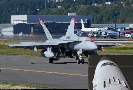 Ho so tiem kich ham F/A-18 danh tieng cua My (4) - Anh 12