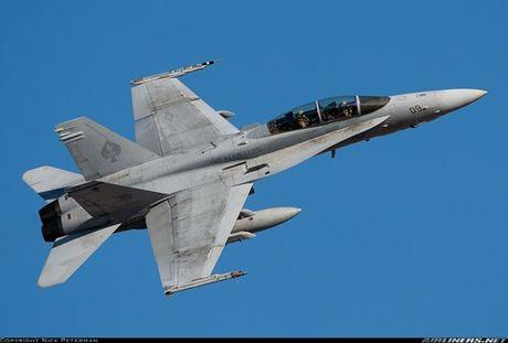 Ho so tiem kich ham F/A-18 danh tieng cua My (4) - Anh 6