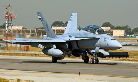 Ho so tiem kich ham F/A-18 danh tieng cua My (4) - Anh 9