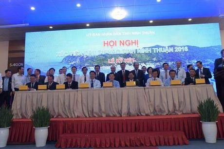"""Thu tuong Nguyen Xuan Phuc: """"Ninh Thuan can phai doi moi trong cach lam quy hoach"""" - Anh 2"""