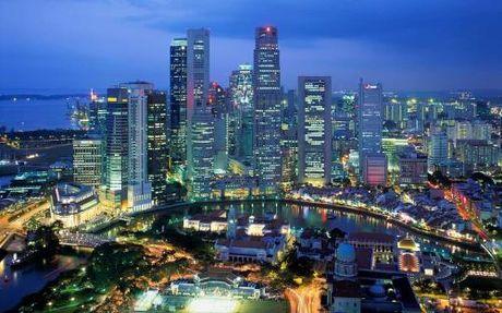 Them xung luc cho quan he thuong mai Viet Nam-Singapore - Anh 2
