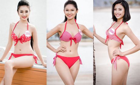 Can canh ve 25 trieu dong xem Hoa Hau Viet Nam 2016 - Anh 1