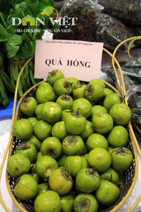Nong san dac san an toan Bac Bo quy tu chon Thu do - Anh 16