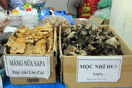 Nong san dac san an toan Bac Bo quy tu chon Thu do - Anh 5