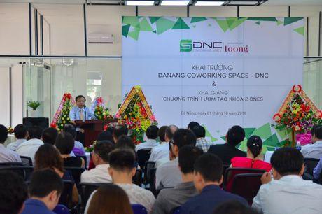 Da Nang: Khai truong khong gian lam viec chung cho cong dong khoi nghiep - Anh 1