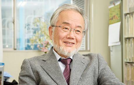 Nobel Y hoc 2016 vinh danh nha khoa hoc Nhat Ban - Anh 1