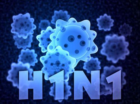 Nguyen tac phong chong cum A H1N1 mua dong xuan - Anh 1