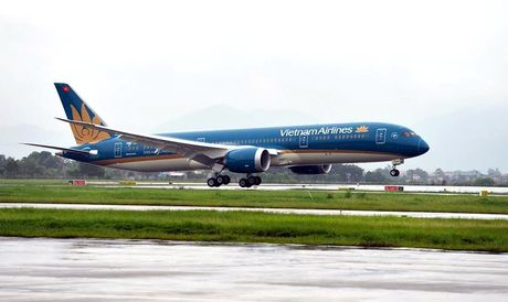 May bay Vietnam Airlines dung hoat dong do bi chim va dong co - Anh 1