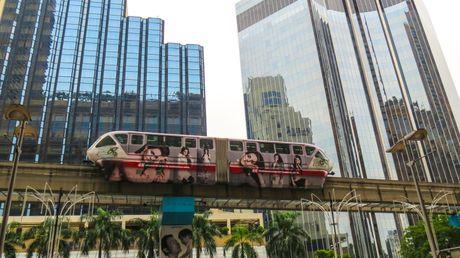 Trong cay duoi duong sat tren cao: Khong phai chi co o Ha Noi - Anh 7