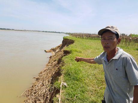 Quang Nam: Dan bat an vi ghe hut cat - Anh 1